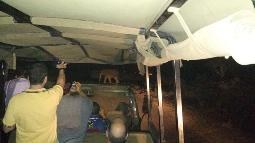 Kruger Park - Safari Noturno - África do Sul